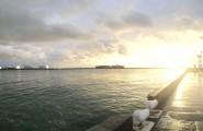Port du Havre Container