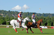 DEAUVILLE Polo